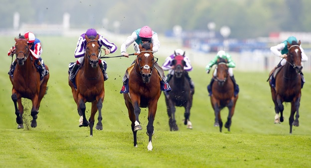 Horse Racing And The Betting Facts Associated With It